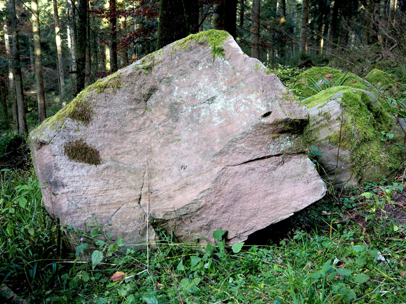 Le Rocher en Forêt Noire