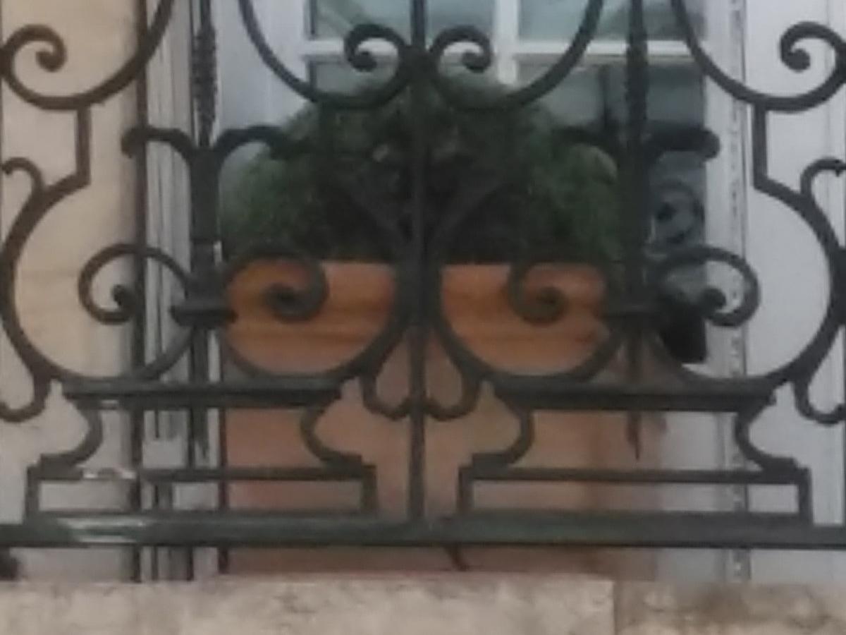 Le Balcon parisien