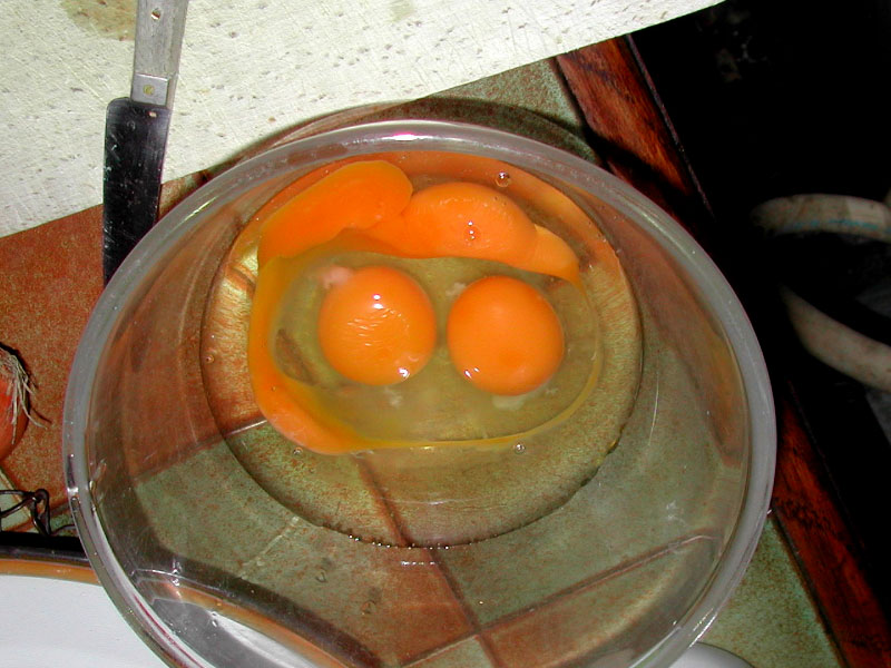 L'Omelette