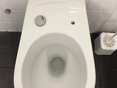 Les Toilettes d'Arte