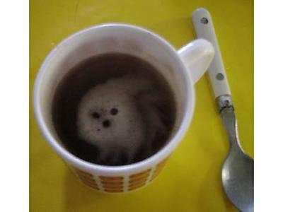 Dans le Café