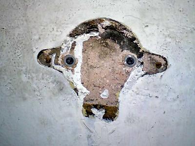 Le Mouton dans le Mur